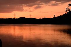 48Yamada Pond Park (anglo10) Tags: sunset japan