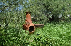 Backyard August 2016 (galiuros) Tags: tucson cheminea mesquite tucsonarizona backyard sonorandesert green monsoon traveltrunk