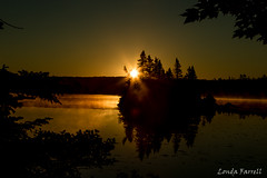 Sunrise on Sherbrooke Lake (londa.farrell) Tags: summer sky sun lake canada reflection silhouette sunrise novascotia outdoor july easternshore sherbrooke serene canondslr afterdark canoneos7dmarkii 2016canon