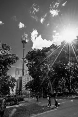 DSC01294 (Damir Govorcin Photography) Tags: centrepoint tower hyde park sydney people zeiss 1635mm sony a7ii sunburst trees