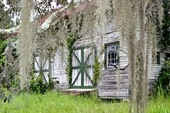 Ford Barn (donjuanmon) Tags: donjuanmon cliches clichesaturday hcs barn wood green moss oaks florida