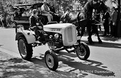 Trammelant 2016 (grommelke007) Tags: trammelant 2016 de haan aan zee dehaanaanzee dehaan oldtimer tractor zwartwit black whit zwart wit