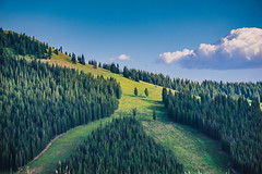 Dealer's Choice (axi11a) Tags: co colorado ski skiing slopes vail grass landscape summer clouds view travel