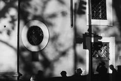 (Chaoqi Xu) Tags: 5d canon chaoqi xu photo italy italia fotografia foto eos city citt photography roma rome travel viaggio              beni culturali monumento ferrara napoli firenze florence naples sicilia sicily venezia venice milan milano turin torino bologna palermo catania siracusa messina agrigento vatican statua statue arte art bw bianco nero black white genova ritratto portrait  history storia garden giardino classic classico