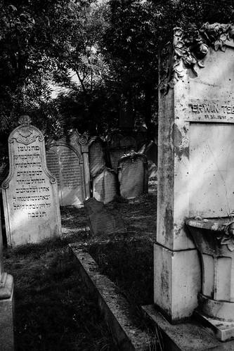 Mikulov Jewish cemetery 02