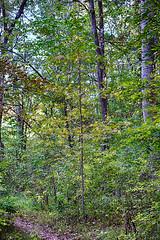 DSC05581-83_HDR (Capt Kodak) Tags: autumn chattahoocheerivernationalrecreationarea fall hdrefexpro2 madefrom3images medlockbridgepark nationalparkservice nikcollectionbygoogle niksoftware photomerge
