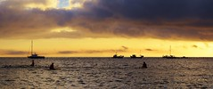 DSC_0295 (fourcroft) Tags: ironmanwales ironman 2016 wales tourism seaswimming pembrokeshire pembrokeshirecoast