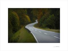 Autumn road (E. Pardo) Tags: carretera otoo autumn road colores colours rboles trees steiermark austria