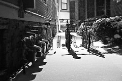 328/365 (local paparazzi (isthmusportrait.com)) Tags: city autumn shadow urban blackandwhite bw white snow black cold brick blancoynegro blanco metal glitter night contrast dark outdoors snowflakes eos 50mm prime evening three pod lowlight aperture missing shiny dof darkness bokeh f14 homeless negro grain freezing evil bikes fresh arctic bicycles textures forgotten shade flurries chilly usm madisonwi noise lose snowfall blizzard threewisemen glimmer ef pedal colder shimmering shimmer coldest 2014 pedalpower coldnight iso6400 50mmf14usm 365project threebikes danecountywisconsin canon5dmarkii nifty50mm lopaps polarvortex