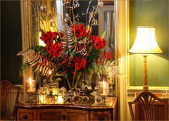 Its beginning to look a lot like Christmas, at Castle Howard (robin denton) Tags: christmas xmas flowers flower history floral floralarrangement flowerarrangement flore yuletide castlehoward historichouse historicbritain floralappreciation