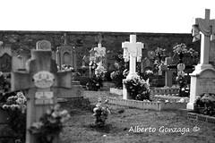 Ambel. Da de todos los Santos (Alberto Gonzaga Ramiro) Tags: espaa halloween de los cementerio dia zaragoza alberto santos aragon ramiro todos gonzaga borja tarazona ambel