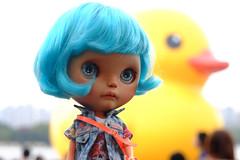 Ramona sees Florentijn Hofman's duck today