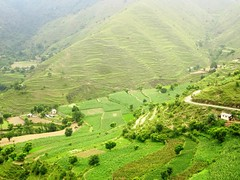 IMG_2266 (rangyo_jaunsar) Tags: vacation india nature village hamlet gaon ruralindia uttarakhand jaunsar rangyo barontha