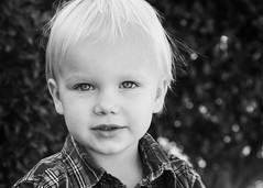 Black & White #2 Austin (lit t) Tags: boy blackandwhite bw plaid canon60d toddlerboy terridoaktaylor