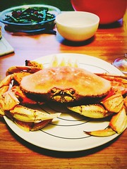 Dungeness Crab (Mitch O) Tags: food dinner yum crab supper oohyeah