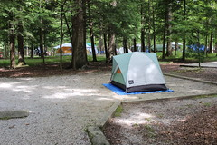 Tennessee (focus:america) Tags: camping ford nature canon nationalpark hiking roadtrip fordfocus smokeymountains ustravel usavacation canont3i