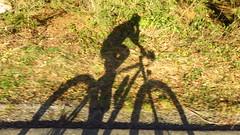 Flachgaurunde bei +18C! (twinni) Tags: salzburg bike austria sterreich mtb biketour flachgau mw1504 10012015