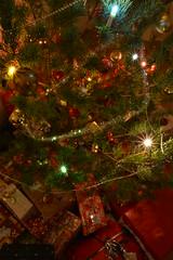 ˚•✫ Silent Night ✫•˚ (Ranveig Marie Photography) Tags: christmas jul juletre christmastree xmas garland ranveigmarienesse ranveignesse pics photographs season noel kersfees christusfees jol рождествохристово bożenarodzenie vánoce navidad høytid holidays weihnachten jól jõulud kerstmis natal crăciun vianoce 圣诞 圣诞节 聖誕節 ziemassvētki pictures photos images bilder photography