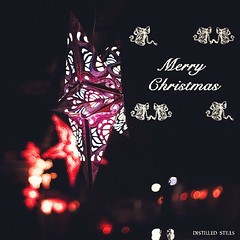 Wish you and your loved ones a Merry Christmas! (pradeep javedar) Tags: christmas festival square typography lights star design seasons bokeh squareformat greetings cheer merry silhoutte yabbadabbadoo ival iphoneography instagramapp uploaded:by=instagram