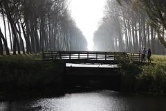 Tra Olanda e Belgio. (Ondeia) Tags: netherlandsolandabelgiumbelgiobruggebrugesgitatriptourvacancyvacanzaholidayamiciospitibiciclettegiroplaceplacesfiumealberivialemeravigliawonderful