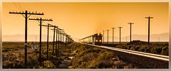 UP 4437, Battle Mountain (NV) 4.6.2014 (VTZK) Tags: sunset yellow train zonsondergang unitedstates nevada zug unionpacific telegraph trein telegraaf battlemountain