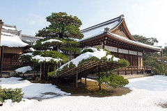(GenJapan1986) Tags: winter snow japan temple kyoto worldheritagesite    25mm 2015      zf2 distagont225 nikond610