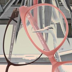 Herr Menig Optik - Collage (Detail) (Philipp Zurmoehle) Tags: plants plant heron collage illustration germany glasses frames ad illustrations german campaign kollage munic nürnberg optician eyewear 2014 optik herrmenig herrmenigoptik