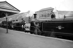 SwR 27099bw (kgvuk) Tags: station trains railwaystation locomotive corfe railways 440 steamtrain m7 corfecastle steamlocomotive manston t9 462 battleofbritainclass swanagerailway 30120 30053 044t corfecastlestation 34070 lswrgreyhound
