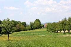 Gundelfingen landscape IV (tillwe) Tags: green landscape spring blackforest tillwe rebberg gundelfingen 201605