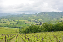 tuscany (phbyo) Tags: tuscany