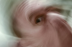 160502-selfie-spin-zoom.jpg (r.nial.bradshaw) Tags: photo image kitlens creativecommons stockphoto stockphotography adobecameraraw royaltyfree attributionlicense probono probonopublico rnialbradshaw 18105mmafs3556gedvrii 18105dxsuperkit