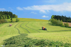 Grass Silage 2016 in the Highlands has started (martin_king.photo) Tags: grass weather work photo spring highlands king martin working tschechische republik machinery chopping machines agriculture 10000 silage started has jumbo 930 tms 924 10010 firstcut fendt 2016 powerfull vario pöttinger poettinger combiline martinkingphoto choppinggrass luckycowsbettermilk