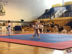 stefanou_15_5_2016_knockdown_65