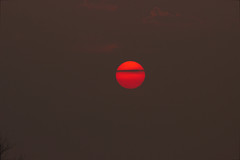 Sunset, bloody sunset (missbutterflies) Tags: sunset fog bretagne brouillard brume myst trbeurden bloodysunset