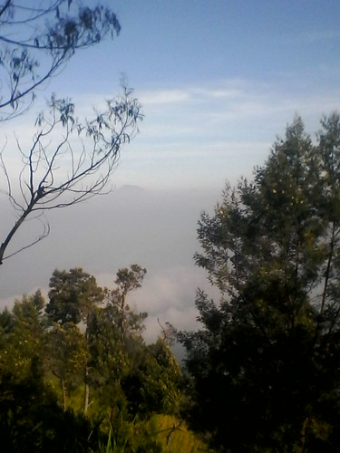 "Pengembaraan Sakuntala ank 26 Merbabu & Merapi 2014 • <a style=""font-size:0.8em;"" href=""http://www.flickr.com/photos/24767572@N00/27162953495/"" target=""_blank"">View on Flickr</a>"