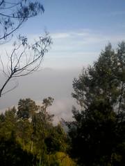 "Pengembaraan Sakuntala ank 26 Merbabu & Merapi 2014 • <a style=""font-size:0.8em;"" href=""http://www.flickr.com/photos/24767572@N00/27162953495/"" target=""_blank"">View on Flickr</a>"