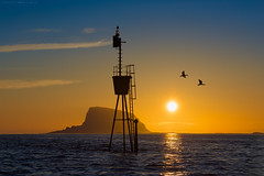 The Dreamy Sunset (Kenneth Solfjeld) Tags: ocean sunset sea sky sun colors beautiful norway cormorants outdoors island coast norge colours outdoor mark norwegen noruega cormorant helgeland nordland lovund northernnorway