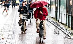 Rainy day (Bart Weerdenburg) Tags: holland rain weather bike bicycle umbrella cycling utrecht thenetherlands rainy regen fietsen paraplu multitasking dutchweather