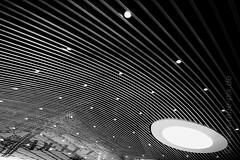DELFT (rabe-pix) Tags: roof 2 bw holland monochrome station xpro bahnhof delft decke sw fujifilm niederlande 1655