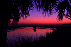 Carribbean Dreams (J Swanstrom (In & Out For A While)) Tags: pink blue sunset blur reflection water silhouette boat nikon long exposure purple palm d750 carribbean jswanstromphotography