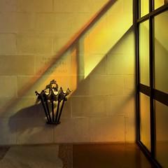 164 / 366 (lufegu) Tags: shadow sunlight window yellow architecture illuminated baptism indoors sagradafamilia holywater lowlightphotography tildefloor