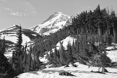 Last Signs of Winter, Mt. Hood (Scott Withers Photography) Tags: oregon mthood barrettspur zeissloxia50mmf2planar sonya7rii