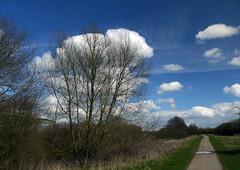 Bubbling Up (Worthing Wanderer) Tags: spring derwent derbyshire april derby derwentvalleyheritageway