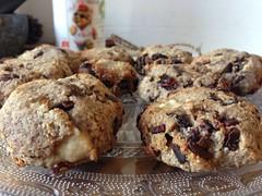Cool Bear Koekies (kaskoekie) Tags: december 2014 recepten koekiesenzo