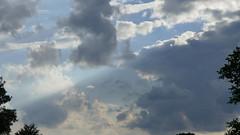 Derniers rayons de soleil sur Le Jardin Plume - Auzouville-sur-Ry - Seine-Maritime - Normandie - France (vanaspati1) Tags: france flower fleurs garden de soleil jardin vert le sur normandie prairie paysage jardins plantes rayons pommiers plume seinemaritime gramines hautenormandie remarquable derniers jardinplume auzouvillesurry vanaspati1