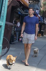 walking dogs wearing underpants (PeepHole of New York) Tags: braghettoni