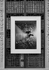 frames (Stewart485) Tags: england stilllife artwork places things impression blenheimpalace evocative vaguelyartyalweiweiexhibition