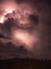 Anglų lietuvių žodynas. Žodis thunder-storm reiškia n audra; perkūnija lietuviškai.
