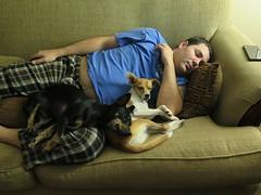 December 24, 2014 (25) (gaymay) Tags: california blue gay sleeping love happy desert palmsprings kitty christmaseve triad darek ozmo rainbowgame greyhuahua