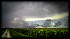 Thunderstorm Approaching (Bob G. Bell) Tags: road leica sky storm clouds illinois corn crop thunderstorm carthage countryroad stillwell hancockcounty cloudsstormssunsetssunrises bonbell